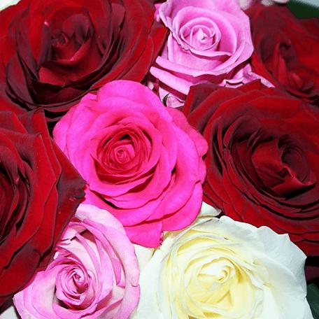 Produto: Rosas - Bouquet encantador