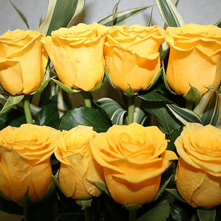 Produto: Composição clássica de Rosas