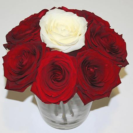 Produto: Distinto de Rosas