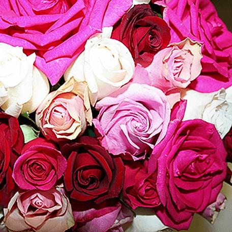 Produto: Rosas com Charme