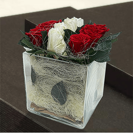 Produto: Trend Roses